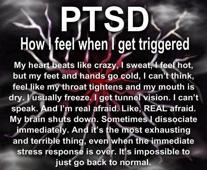 4d5f69d880c0fb28d5776c8b3ae969dd--ptsd-symptoms-triggers-ptsd